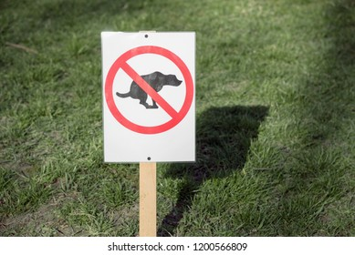 A sign with a pattern prohibiting the walk of dogs on a green lawn. no dog feces. ban on dog walking