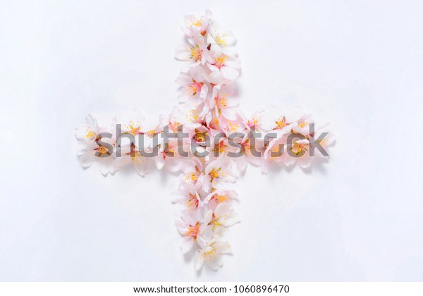 Sign plus lined pink flowers on a white background