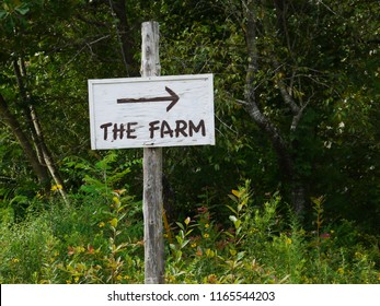 The sign points the way to The Farm, one of the oldest hippie communes in the US.  They are famous for their midwifery program.