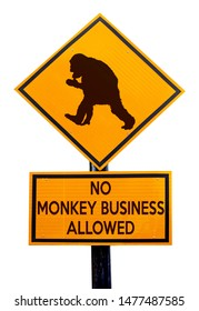 A sign pole with a cheeky chimpanzee monkey symbol and the message: No monkey business allowed. Isolated against white.