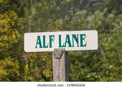 Sign post with ALF LN written on it in front of forest on camping