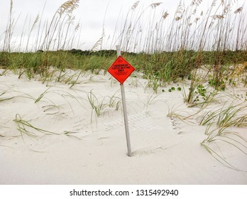 A sign is posted on a Myrtle Beach South Carolina beach warning people to stay off the dunes where the loggerhead turtle is nesting.