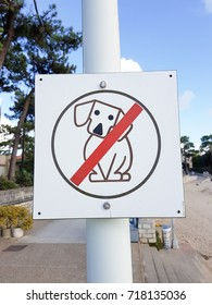 Sign prohibiting no dogs allowed on a resort beach and city sand