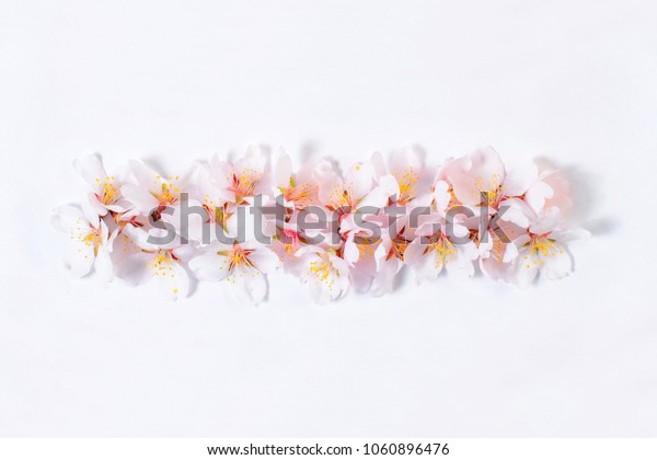 Sign of subtraction or dash lined with pink flowers on a white background