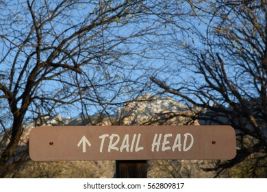 Sign for a trail head with bare tree branches and a snow covered mountain in the background