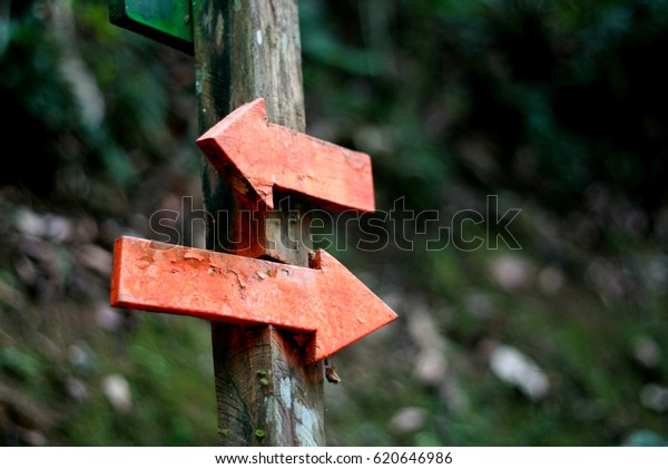 sign with two wooden arrows indicating opposite directions