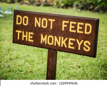 """Sign with words """"Do not feed the monkeys"""" on it"""