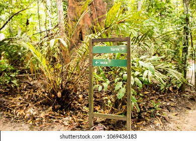Signage Board in the Amazon Forest, Environmental park with trail in the middle of the jungle