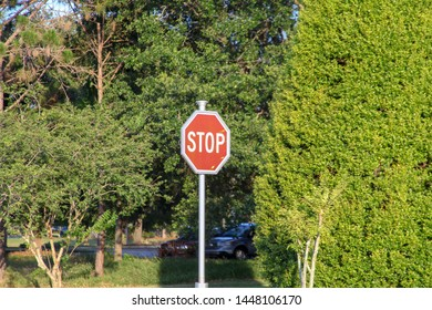 Signage board, sign, STOP, in the background a forest, United States of America.