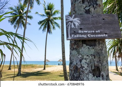 "Signboard with ""Beware Of Falling Coconuts"" to warn visitor at the beach."