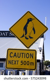 Signboard of Penguin On Next 500m