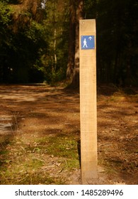 Signpost hiking track in the forest