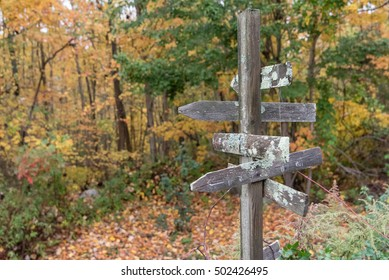 Signpost near a trail in the woods