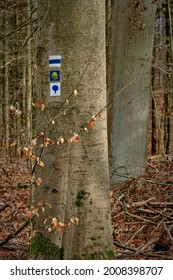 """Signposts for hikers on a tree in the Brandenburg nature reserve """"Nonnenfliess"""" near """"Forsthaus Geschirr"""". In the middle the symbol for the """"Way of Saint James"""""""