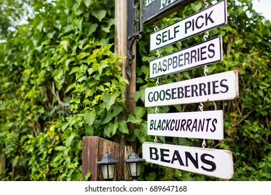 Signs for healthy organic food fruit and veg pick your own
