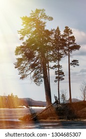 Signs of spring for Earth watchers, Earth observers. Snow on the ice lakes saturated with water and blue. Forest lake in Lapland and the sun's rays. Islet with pine