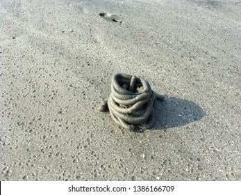 Sand Worm Images, Stock Photos & Vectors | Shutterstock