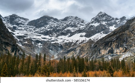 Siguniang mountain or Four sister mountain with snow cap on top and colourful autumn in Sichuan, China