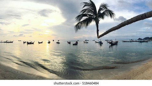 sihouettes photo of angle coconut tree at shore with boat and skyline during sunset in evening