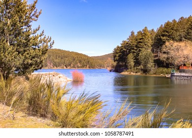 Sila National Park, Calabria, Italy. Lake Ampollino.