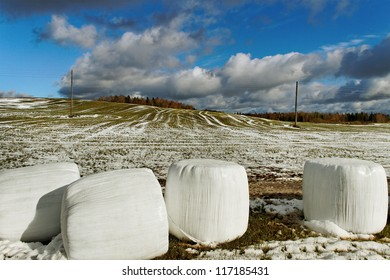 Silage on the field in a winter season.
