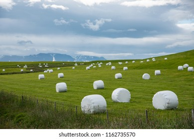 Silage on a meadow in iceland
