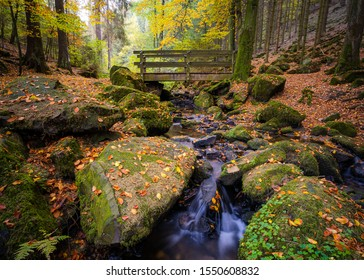 """The """"Silberbachtal"""" in Autumn in the """"Teutoburger Wald"""", Horn-Bad Meinberg, Detmold, Germany - Shutterstock ID 1550608832"""