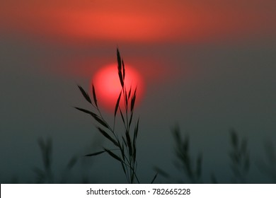 silence at sunset
