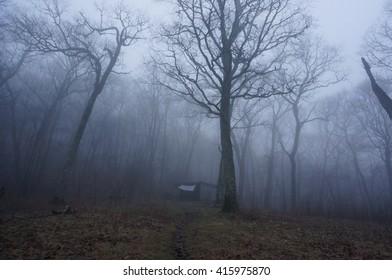 Siler Bald Shelter, Appalachian Trail, North Carolina.