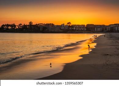 Silgar beach in Sanxenxo tourist city at golden dusk reflected on the sea