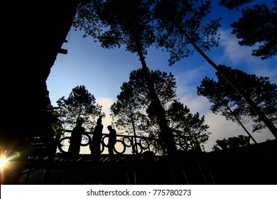 silhouette of  3 dancers