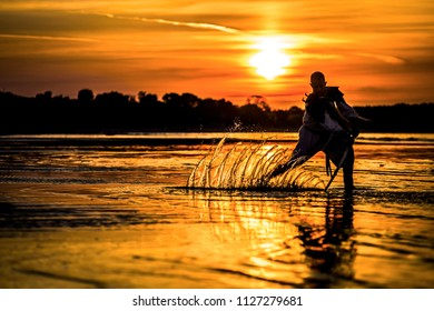 Silhouette of assassin with the sword at the beach. He is posing at the sea during beautiful, orange, yellow sunset. Splashes on the water from the sword.