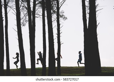 silhouette of athletes running in the forest.