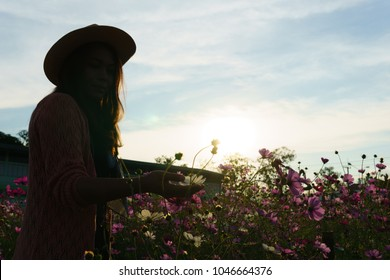 Silhouette and Backlight photo of young beautiful asian female wear hat in cosmos field when sunset or twilight. Romantic moment when sunset .