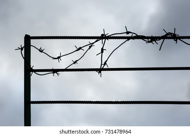 Silhouette of barbed wire.