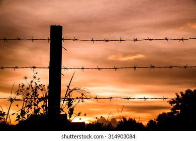 silhouette of Barbed wire on sunset background