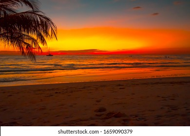 Silhouette of beautiful sunset on the sea beach with palm tree for travel in holiday relax time,