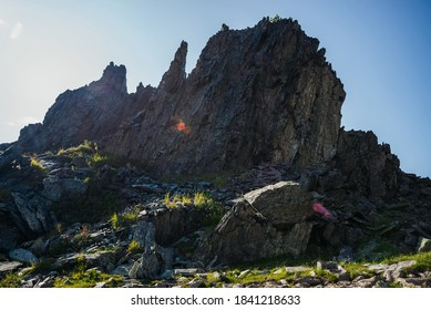 Silhouette of big sharp rock with vivid solar flare. Great pointy stone among greenery on mountain top in sunny day. Grasses and flowers on stones in sunlight. Awesome alpine scenery with pointed rock