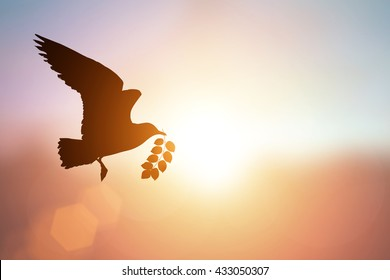 silhouette of bird carrying leaf branch and international day of peace 2016