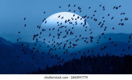Silhouette von Vögeln, die über blaue Berge fliegen - Schöne Landschaft mit blauen mistigen Silhouetten von Bergen gegen superblauer Mond auf