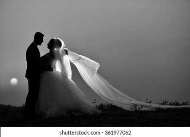 silhouette in black and white bride groom