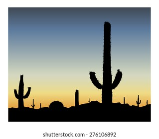 Silhouette of blooming cactuses on the background of desert. Blue sky.