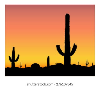 Silhouette of blooming cactuses on the background of desert. Heat.