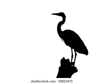 Silhouette of a Blue Heron isolated  on white