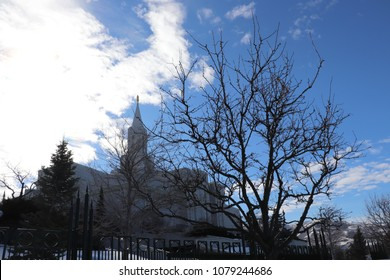 Silhouette of a budding tree in front of the Bountiful Utah LDS Mormon temple