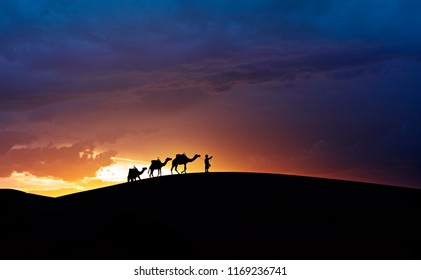 Silhouette of camel caravans and sand dunes with sunset at Sahara, Morocco.