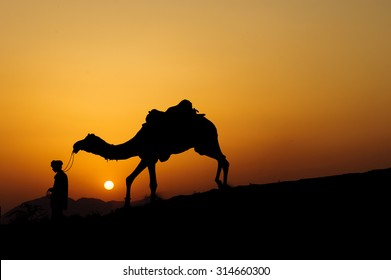 Silhouette of the Camel Trader crossing the sand dune during sunset  at Sunset Point, Pushkar, India. Image is soft and contain noise due to high ISO used.