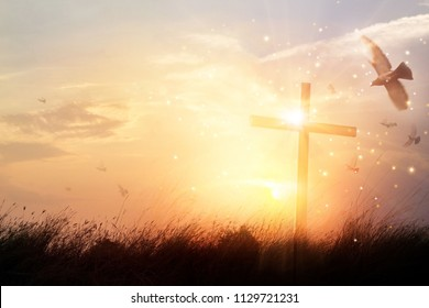 Silhouette christian cross on grass at sunrise background with miracle bright lighting, religion and worship concept