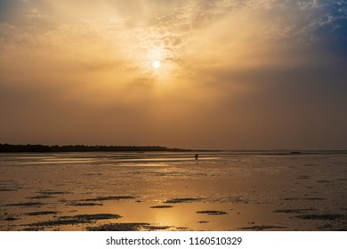 Silhouette of a cockle catcher at the beach in the island of Orango at sunset, in Guinea Bissau. Orango is part of the Bijagos Archipelago; Concept for travel in Africa and summer vacations