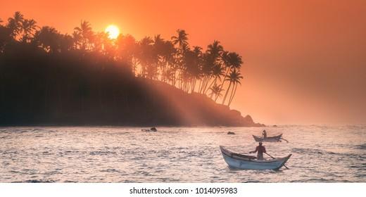 Silhouette of coconut palm and sun lights true trees on beach at sunset, Mirissa, Sri Lanka